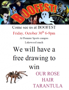 boo fest flyer t
